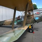 Amandas Tiger Moth
